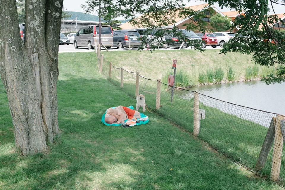 Ein Mann liegt auf dem Rasen