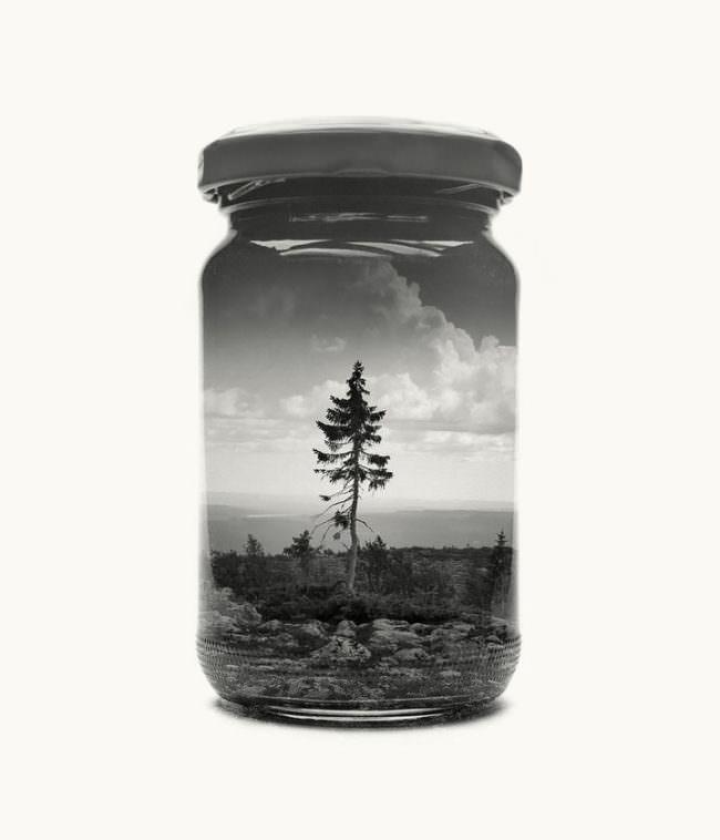 Abbildung eines Marmeladeglases vor hellem Hintergrund auf dem wir einen einzelnen Baum sehen.