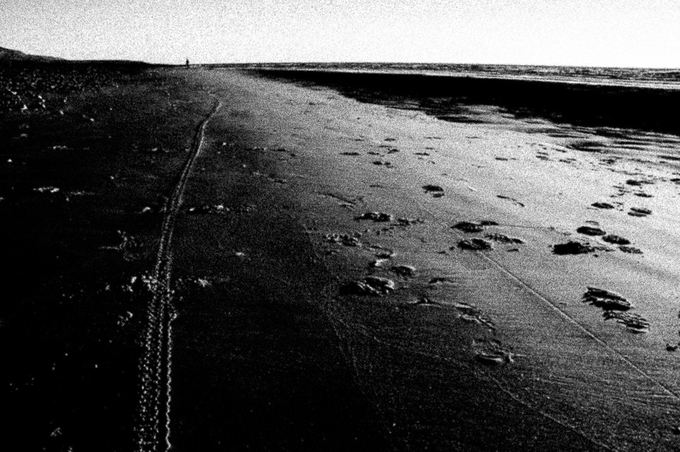Ein Spur am Strand.