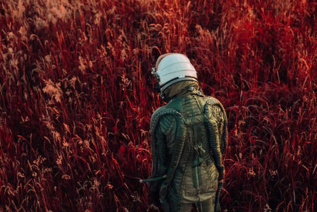 Der Rücken eines Astronauten, der vor einer Wiese mit rotem Gras steht.