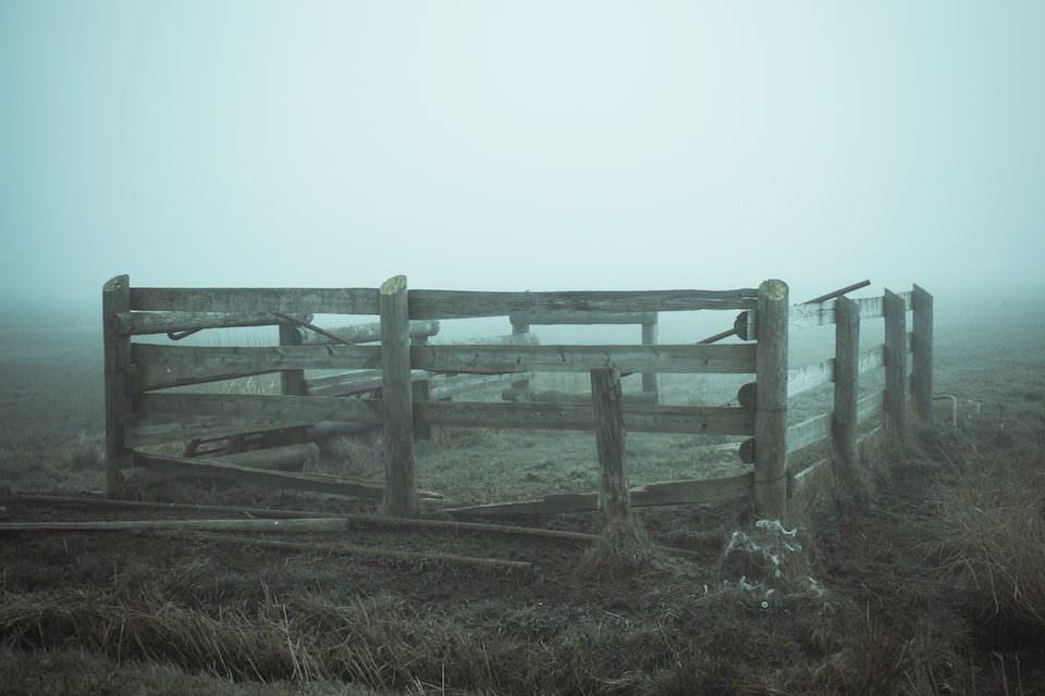 Aufnahme eines alten, kaputten Zaunes auf einer Wiese im Nebel.
