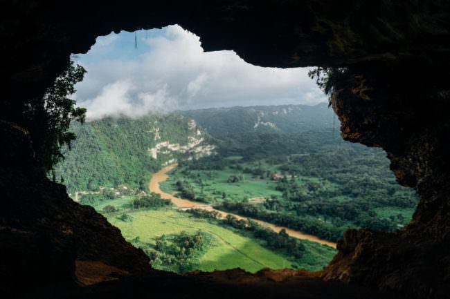 Blick auf einen Wald aus einer Höhle heraus