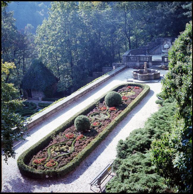 Blick auf einen Garten