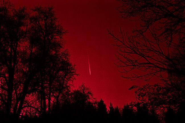 Roter Himmel mit Baumsilhouetten