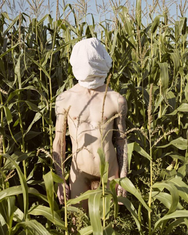 Ein nackter Mann im Maisfeld