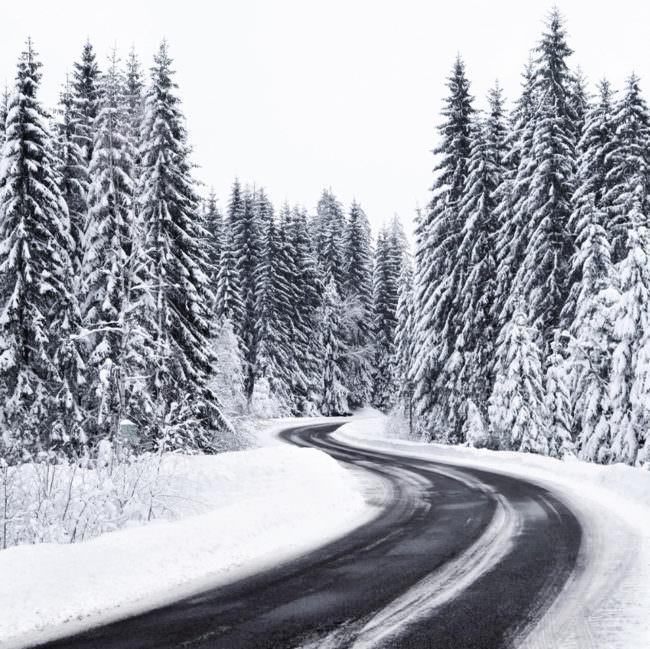 Straße im Winterwald