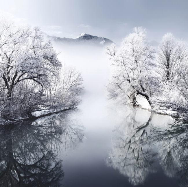 See mit schneebedeckten Bäumen