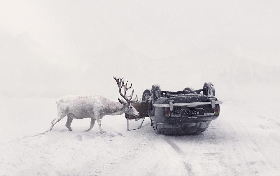 Ein Hirsch in einer Schneelandschaft das sich ein umgeworfenes Auto ansieht.