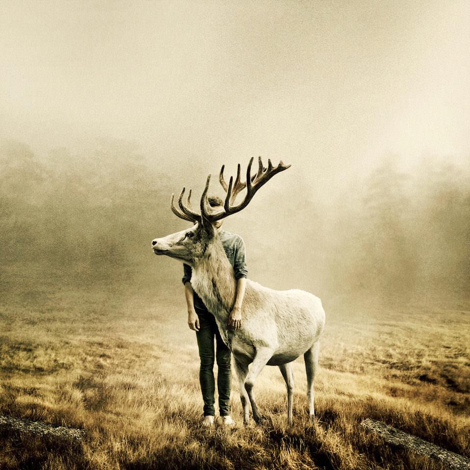 Ein Mann der hinter einem Hirsch steht und dieses umarmt.