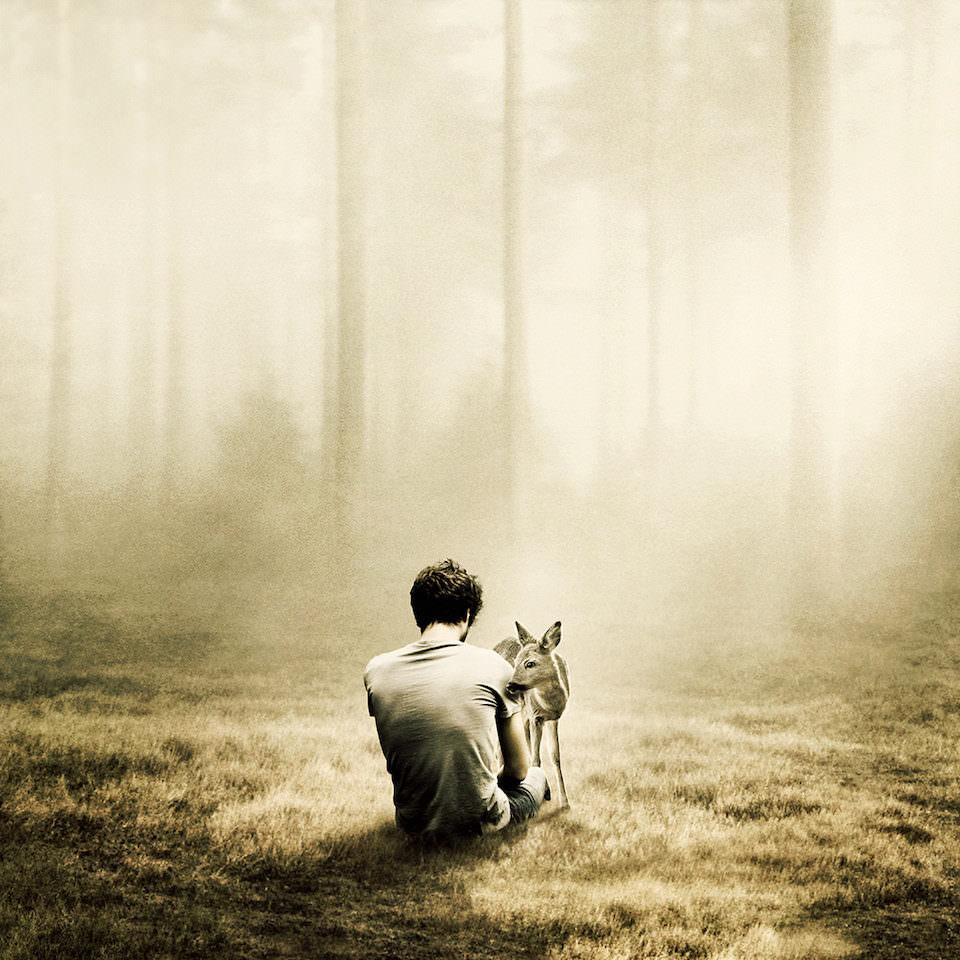 Ein Mann sitzt in einem Wald und ein Reh steht direkt neben ihm.