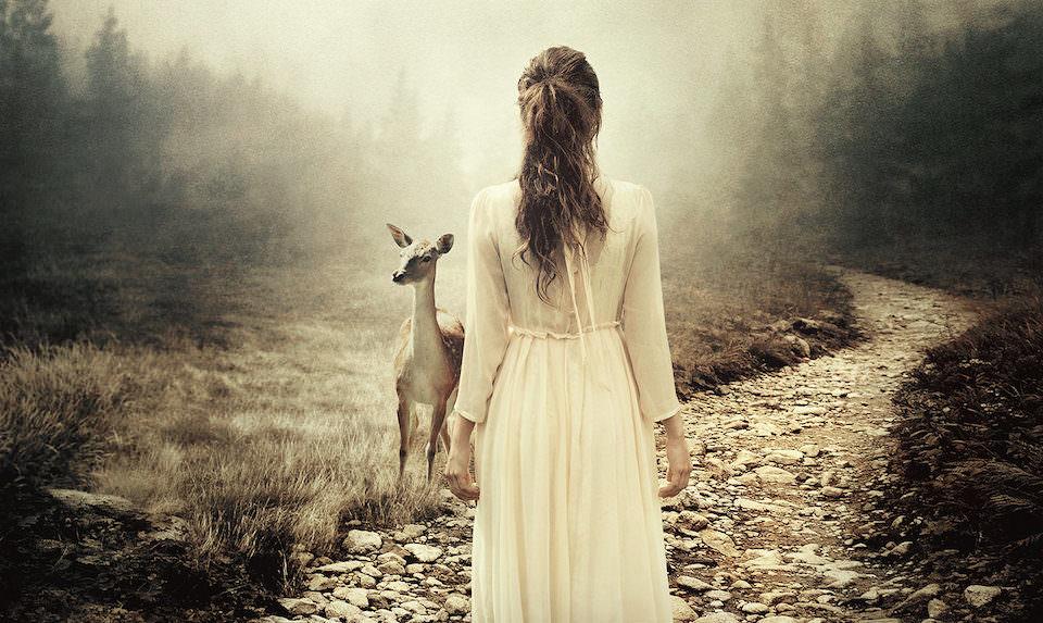 Eine Frau die auf einem Schotterweg entlang geht und ein Reh anblickt.
