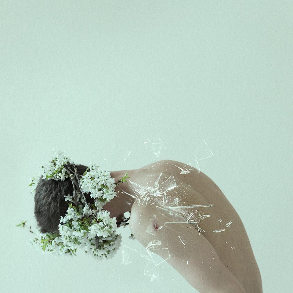 Ein Mann der seinen Kopf in Blumen versenkt. Glassplitter fliegen durch das Bild.