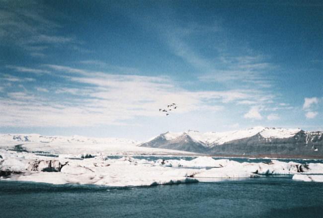 Eine Eislandschaft über die Vögel fliegen.