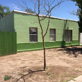 Ein grünes Haus mit einem blattlosen Baum davor.