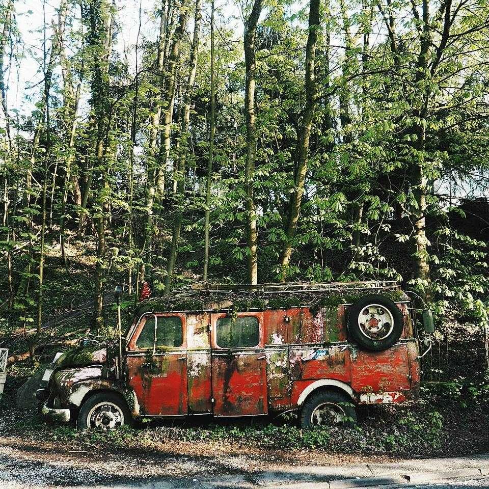 Ein altes Auto am Wald
