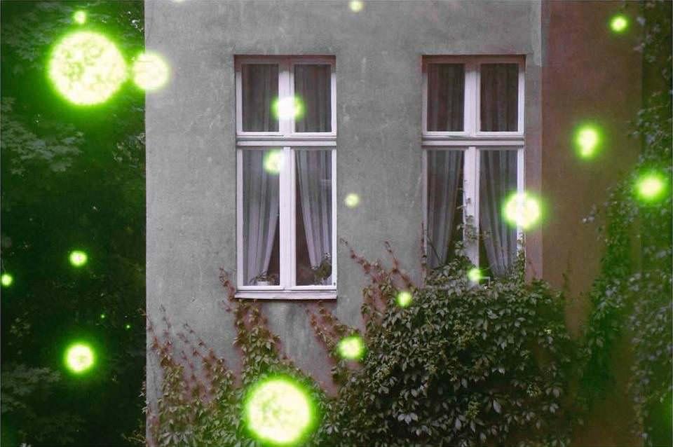 Fassade mit zwei Fenstern und Efeu, überlagert von grünen, leuchtenden Punkten.