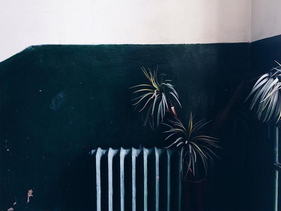Heizung und Pflanze vor einer Wand, die oben hell und unten dunkelblau ist.