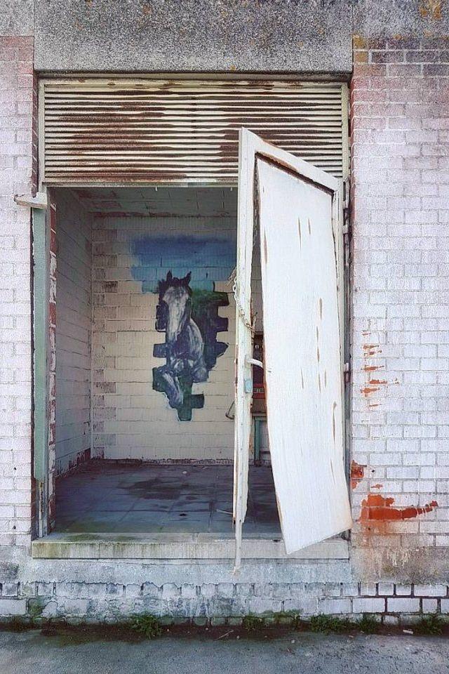 Kaputte Metalltür in abgenutzter Wand, dahinter ein Bild mit Pferd.