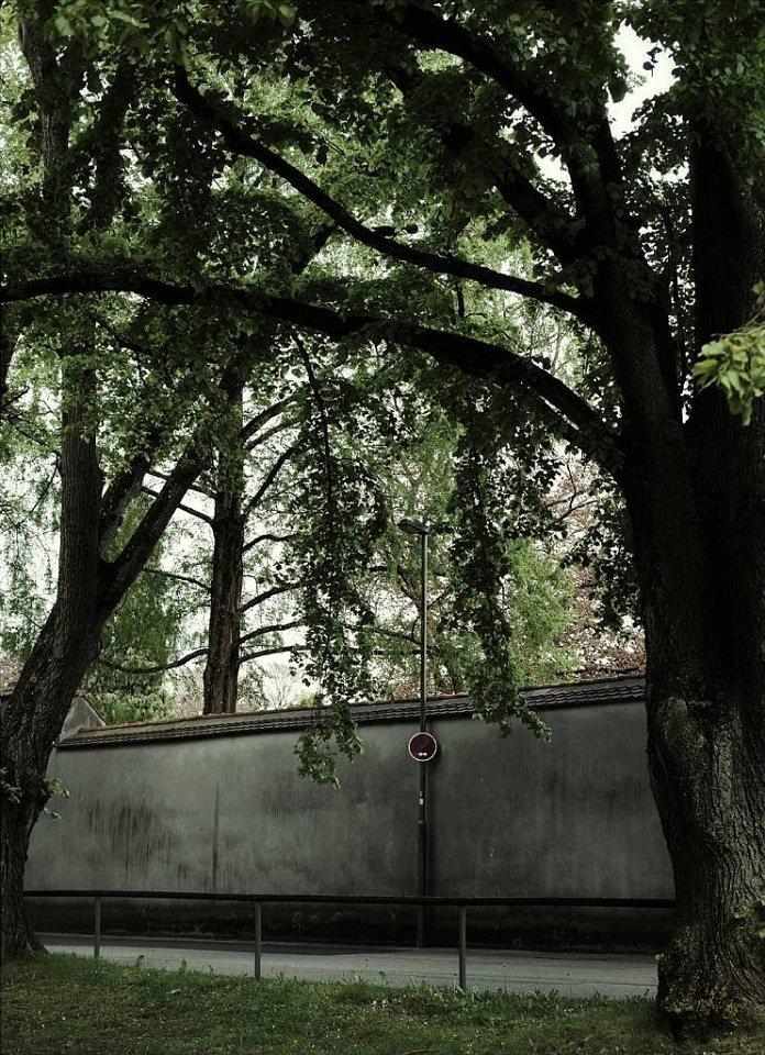 Von hohen Bäumen umgebene Mauer mit Halteverbotschild.