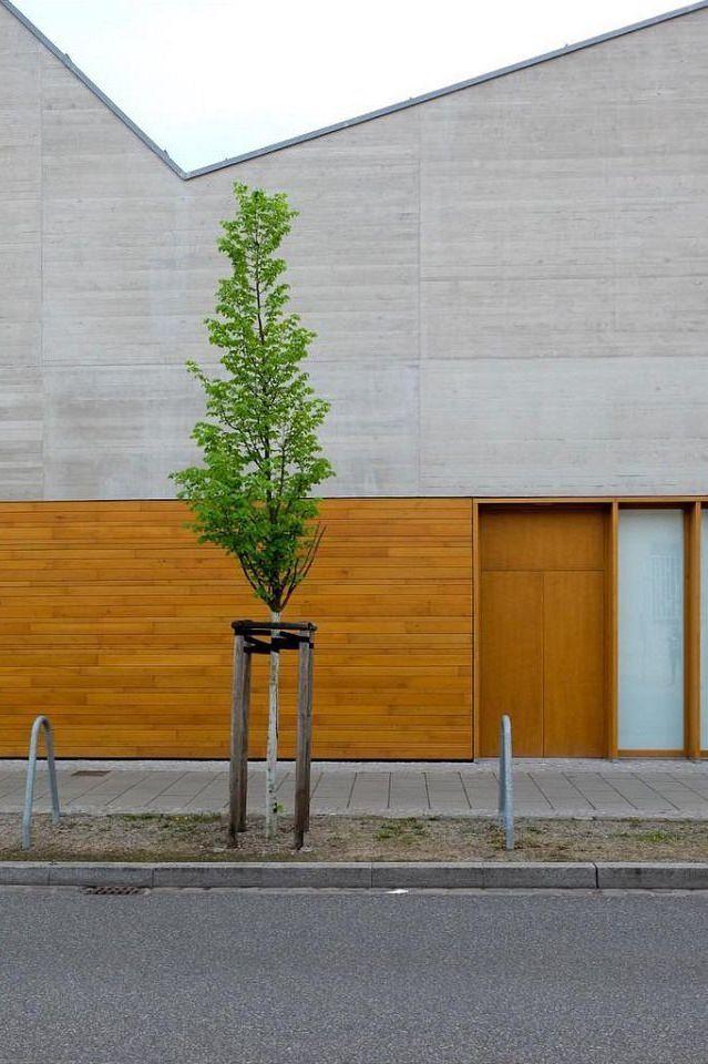 Bäumchen an einer Straße vor einem modernen Bau mit minimalistischer Beton- und Holzfassade.