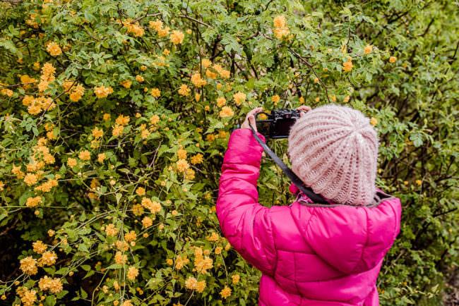 Ein Kind fotografiert Blüten