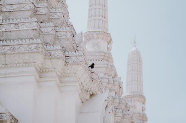 Weiße Tempelwände mit einem schwarzen Vogel