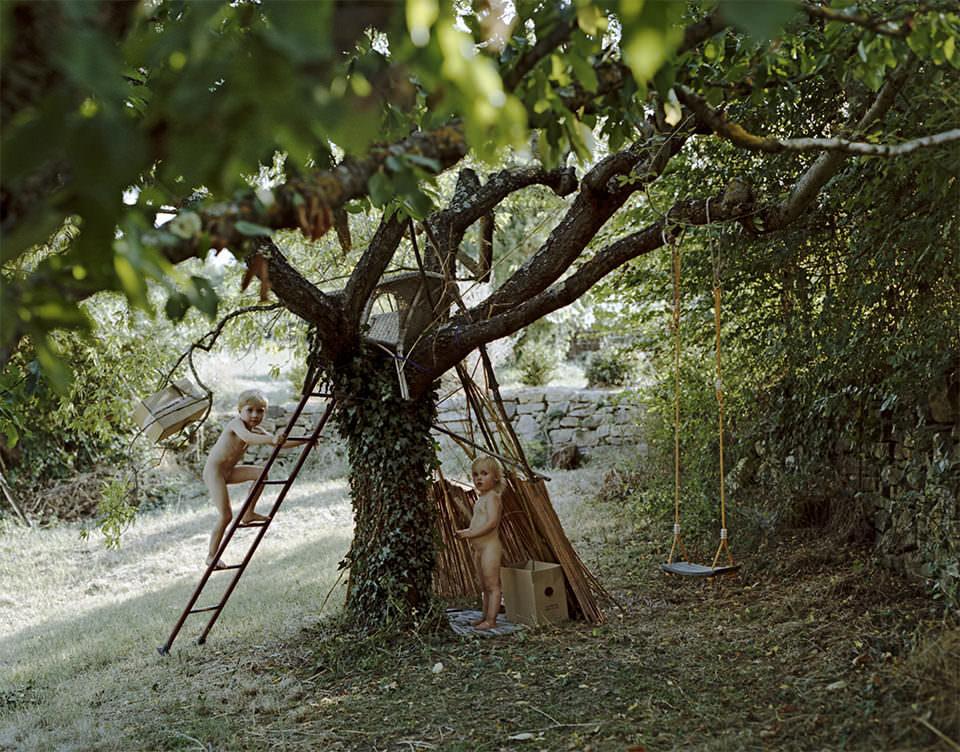 Baum, an dem zwei Leitern lehnen, auf denen kleine Kinder klettern.