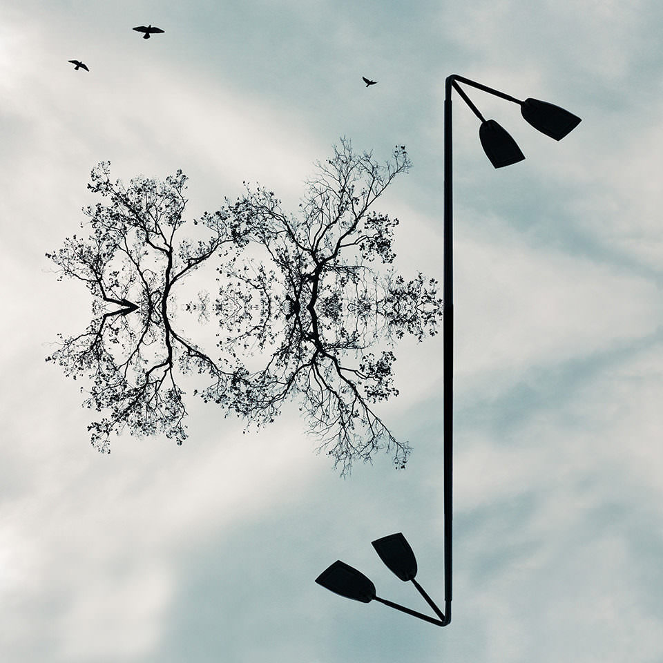 Gespiegelte Bäume und Laterne