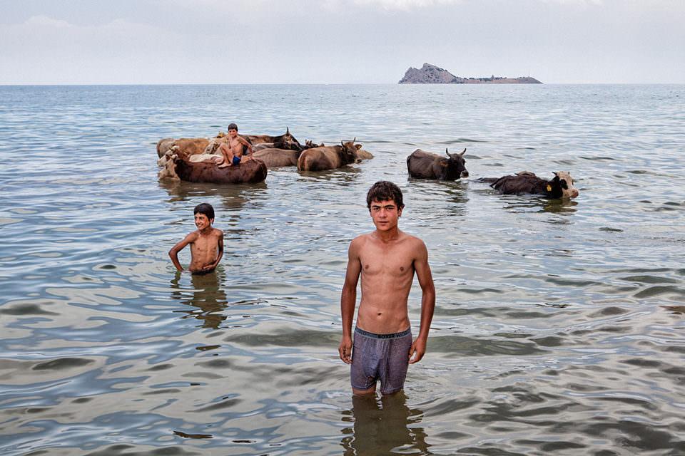 Jungen waschen ihr Vieh im Meer
