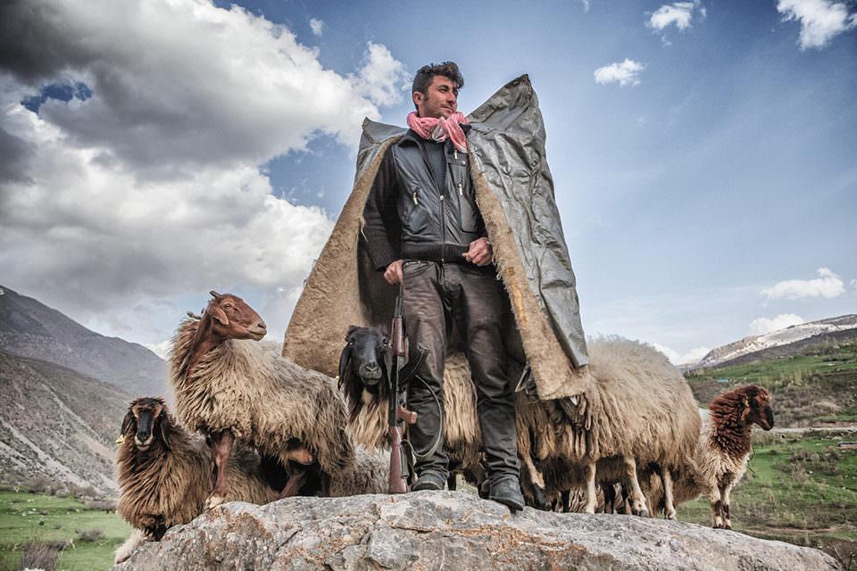 Ein Schäfer mit Schafen