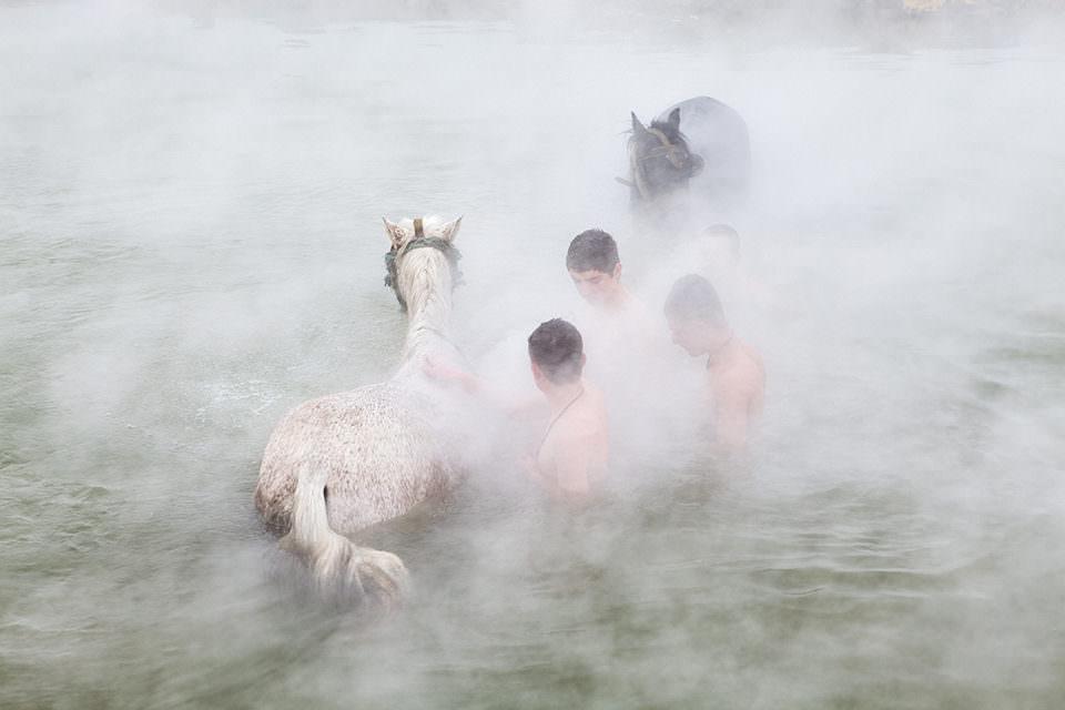Jungen reinigen ihre Pferde im Wasser