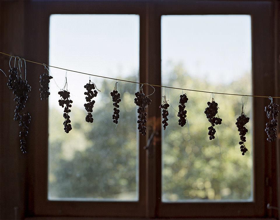 An einer Schnurr aufgehängte Trauben vor einem Fenster.