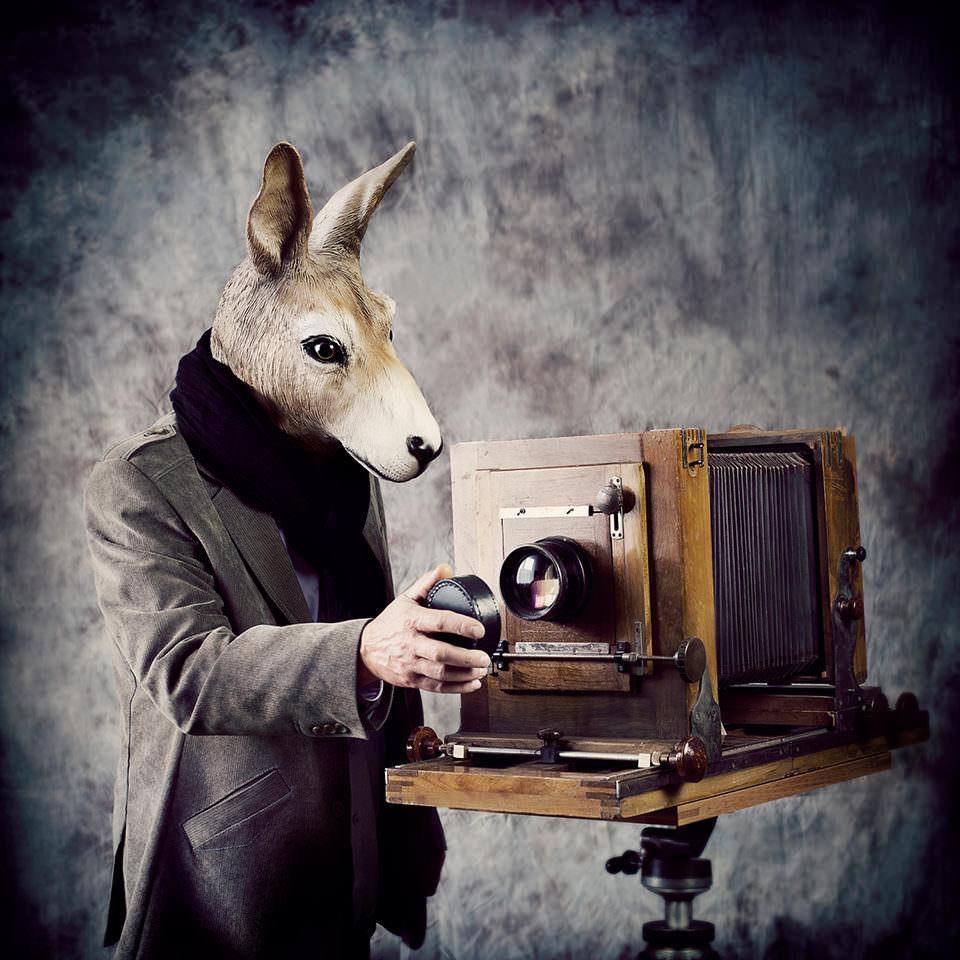 Ein Hase mit einer altem Kamera