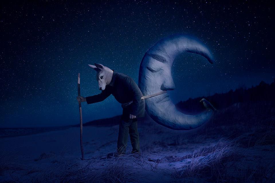 Ein Hase hat einen Mond umgebunden