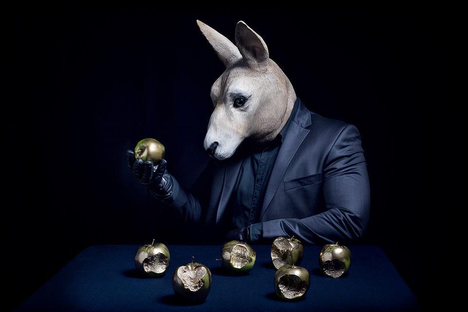 Ein Hase mit Äpfeln