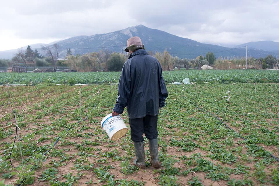 Ein Mann auf einem Feld mit weißem Eimer