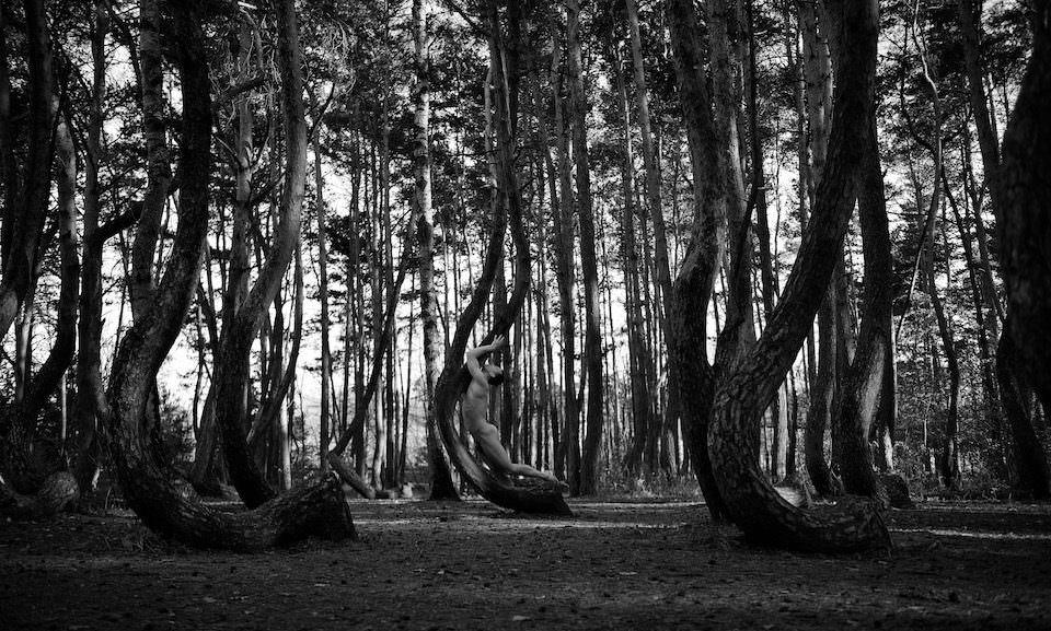 Ein Mann liegt  in gebogenen Bäumen