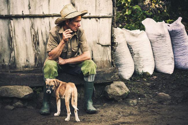 Mann mit Hund auf der Straße