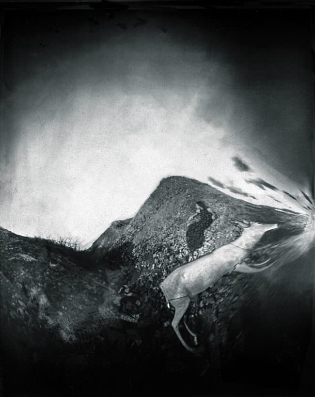 Tier und Mensch in schwarzweiß in einer verzerrten Landschaft.