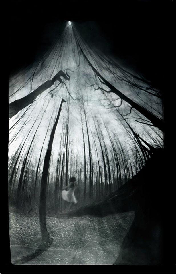 Frau in einem hellen Kleid in mitten von kahlen Stämmen die gen Himmel fluchten in schwarzweiß.
