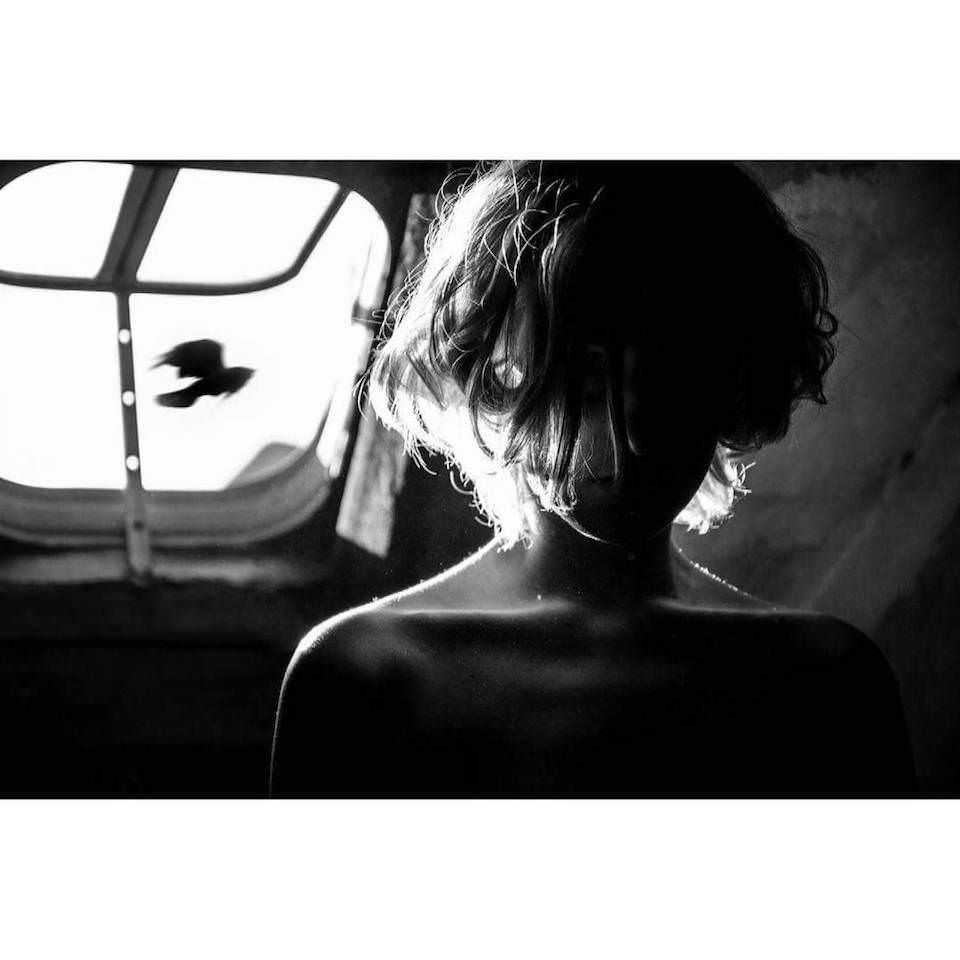 Portrait einer Frau. Am Fenster dahinter fliegt ein Vogel vorbei.