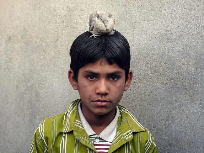 Ein Junge mit Vogel auf dem Kopf