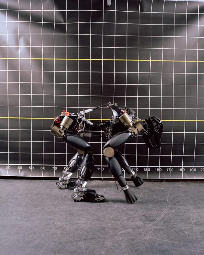 Roboter als tierähnliches Wesen vor einer Skalierungswand.