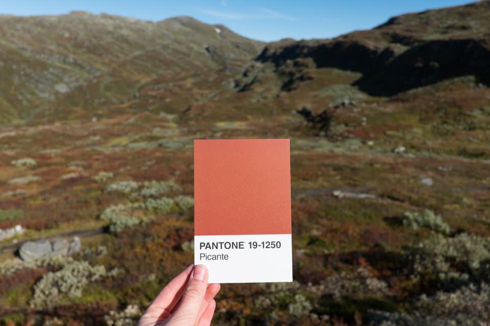 Landschaft mit Farbkarte