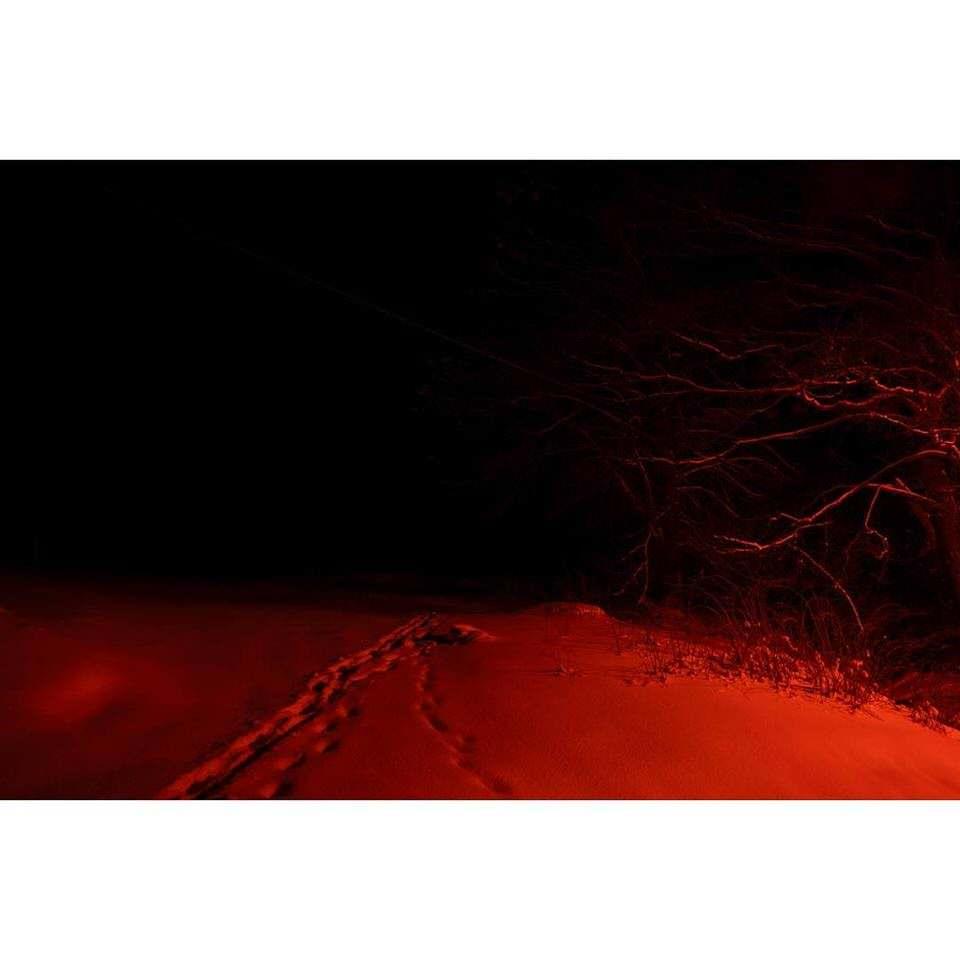 Spuren im Schnee im Dunkeln mit rotem Licht