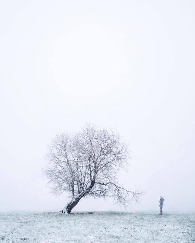 Eine Person vor einem kahlen Baum