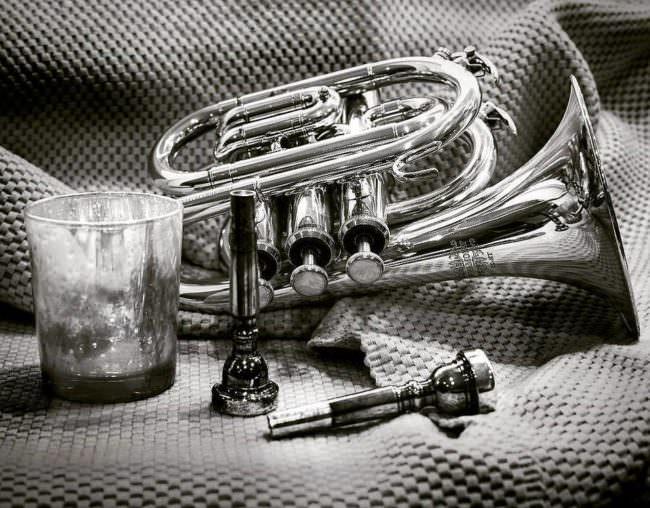 Stillleben mit Trompete
