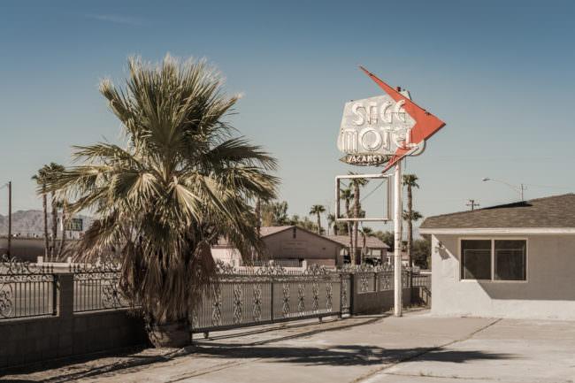 Motelschild und Palme auf einem Betonplatz
