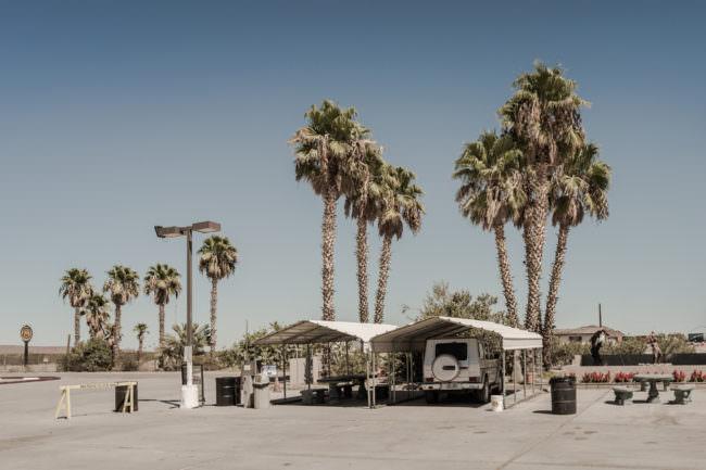 Zelte vor Palmen