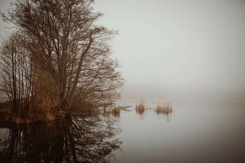 See im Nebel